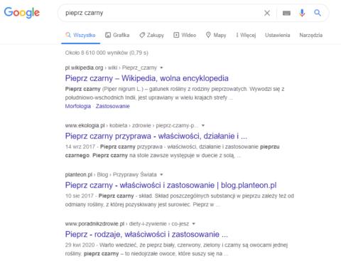 Pozycjonowanie sklepu internetowego_opisy zwiedzą